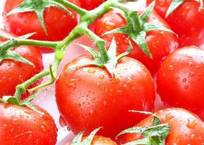 除秋燥 多吃这7种水果(组图) - 满山红 - 满山红的博客
