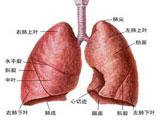认识肺癌疼痛