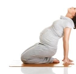 瑜伽体式--新月式
