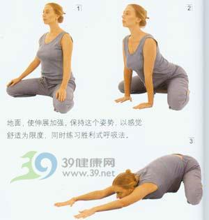 瑜伽体式--