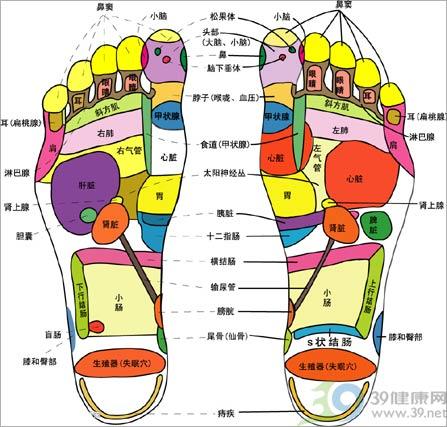 """""""足神""""太极保健穴位按摩鞋试用"""