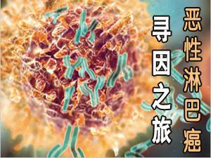 恶性淋巴瘤寻因之旅