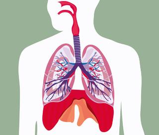 慢性阻塞性肺病图片