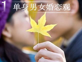 2010单身男女婚恋观粉皮书