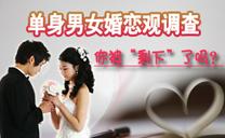 2010单身男女婚恋观调查