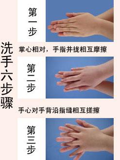 洗手六步骤
