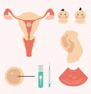 试管婴儿诞生记:以另类的方式生育