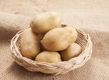 惊蛰节民间习俗:吃梨