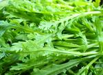 海茸 绿色的食品 健康的选择