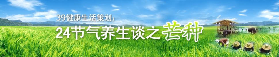 2013芒种节气(芒种节气养生 芒种节气祛湿)
