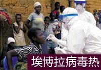 埃博拉病毒热