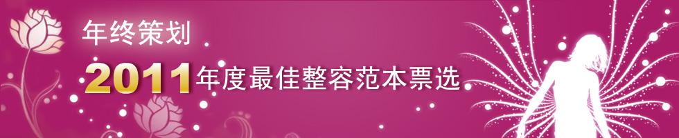 2011年度最佳整容范本票选