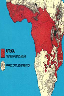 非洲锥虫病百科