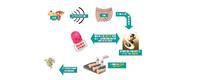糖尿病治疗新选择:肠促胰岛素