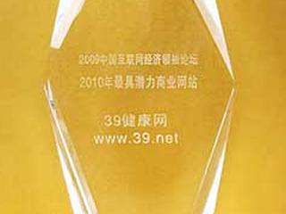 2010年最具潜力商业网站
