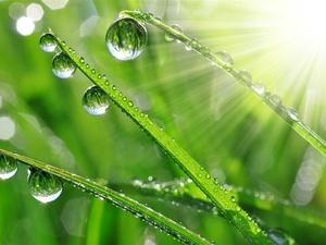 谷雨养生谨防湿邪入侵