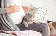 怀孕最初期的症状有哪些