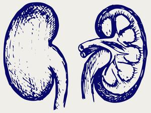 如果得了尿毒症,我们还能活多久?