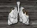 肺癌有什么症状?四个信号必须了解清楚