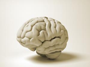 小脑与精神分裂症密切相关