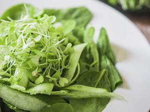 秋季调理湿疹多吃这些蔬菜