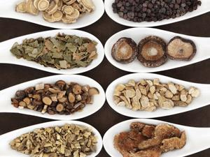 哪些中药有减肥消脂作用?