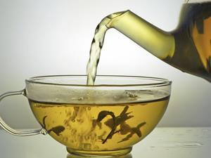 女人喝什么茶减肥最快