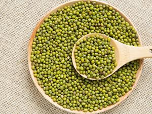 夏天喝绿豆汤有什么作用?