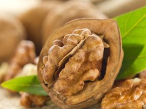 中年男人易肾虚 多吃8种食物温肾壮阳