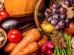 女人保养卵巢防早衰 8大食物有帮助