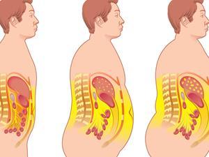 一张图告诉你吃什么会胖哪里