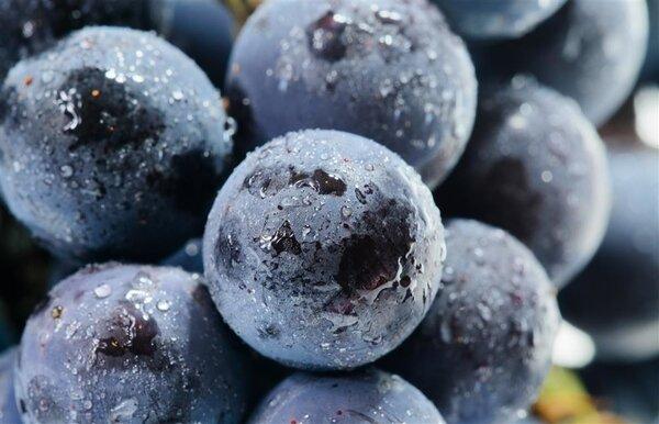 吃什么能延缓衰老?最抗衰老的7种食物推荐给你