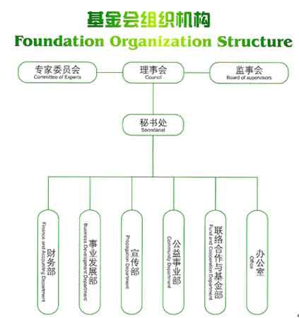 基金会组织机构图