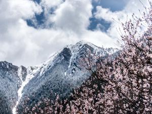 今日立冬,立冬节气的养生之道