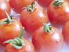番茄全身都是宝 怎样吃最养生?