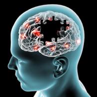 脑起搏器手术治疗帕金森全过程
