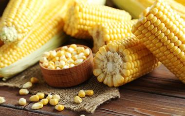 牛奶玉米叮的做法步骤1:切玉米圆柱