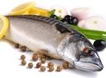 如何分辨油鱼和鳕鱼