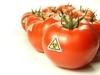 吃西红柿能减肥?教你西红柿减肥方法