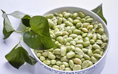 薄荷绿豆汤的做法步骤3:放入豆浆机