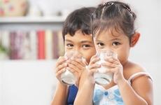 喝牛奶常犯的8个错误 怎么喝牛奶最有营养