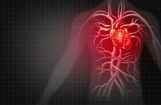 心脏病的症状有哪些呢?