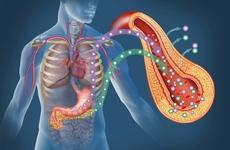 讓糖尿病聽話,代謝科醫生有4個方法,不妨了解