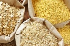 什么食物热量低有利于减肥?