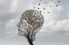 第26个世界阿尔茨海默病日,卫健委发布《预防与干预核心信息》