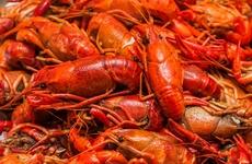 """吃小龙虾后出现这些症状,小心胃""""美""""了肾""""伤""""了!"""