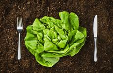 想要改变不良的饮食习惯吗?这三种方法可以帮助你!