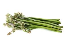 蕨菜100%致癌?蕨菜要歇菜了吗?真相却是……