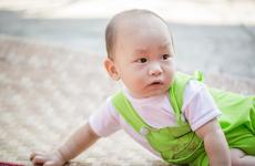 宝宝多吃什么可以预防近视?