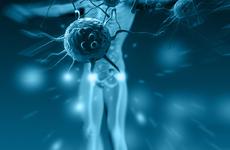免疫力是世上最好的医生,它的能力越强就越好吗?